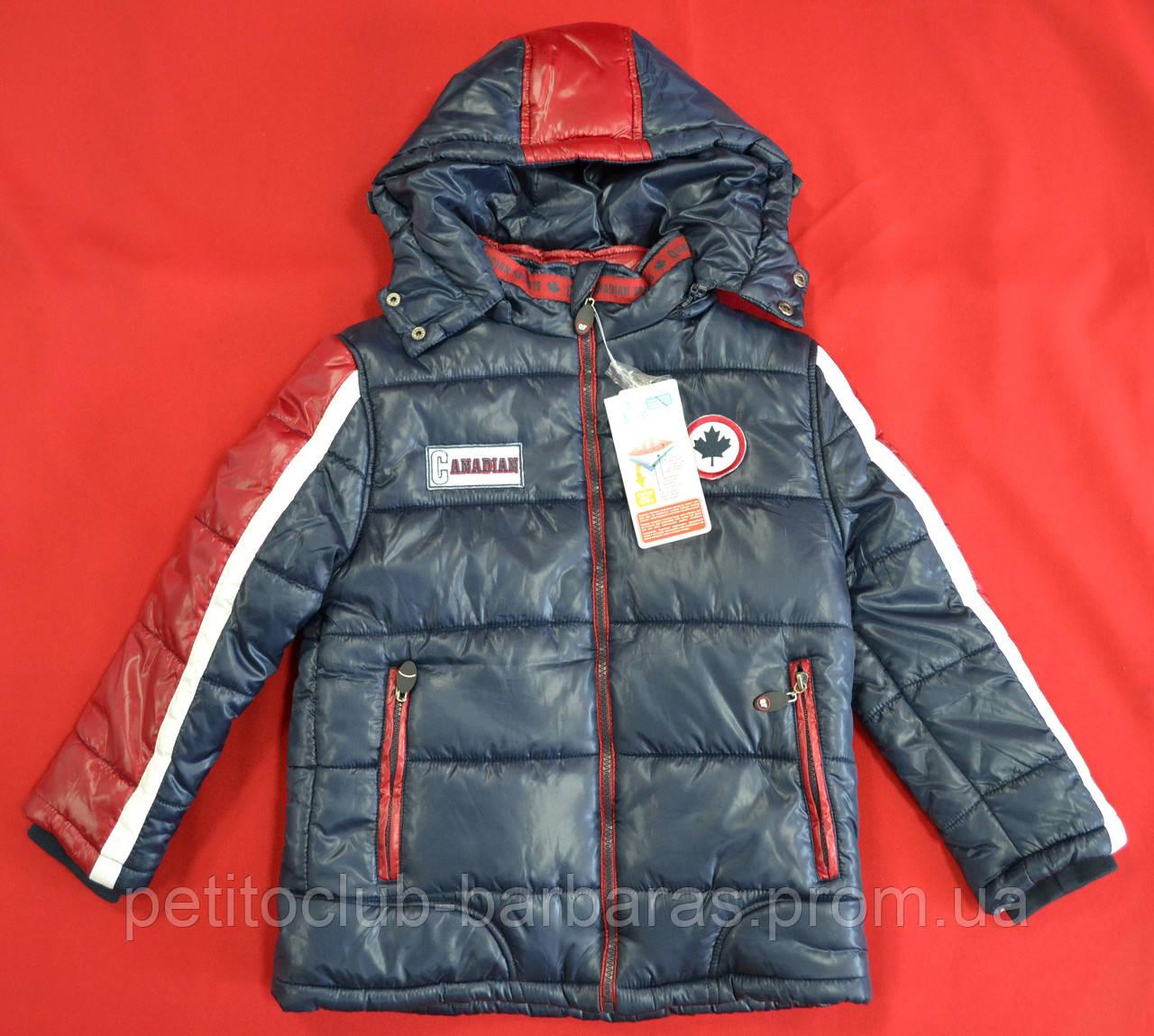 Зимняя куртка для мальчика Canadian темно-синяя (QuadriFoglio, Польша)