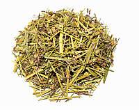 Коронария трава (Кукушкин цвет)