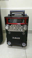 Акустика на аккумуляторе с микрофоном RX-2088