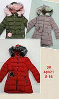 Куртка для девочек оптом, Setty Koop, 8-16 лет,  № AP821