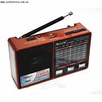 Акустика-Радио с аккумулятором Golon RX-8866