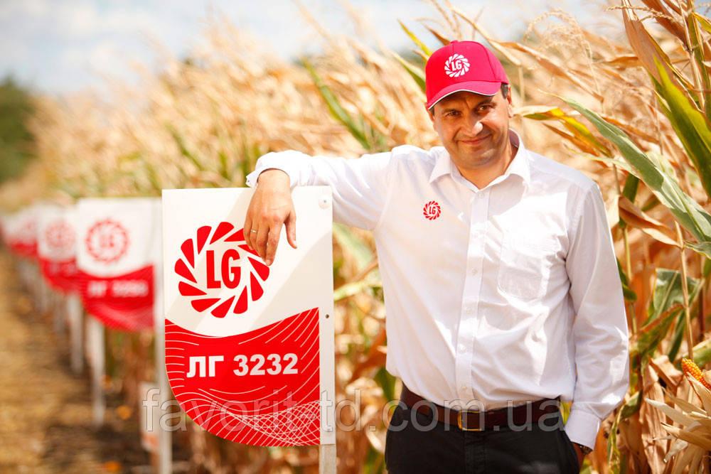 Гібрид кукурудзи Лімагрейн ЛГ 3255 (ФАО 250)