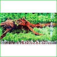 Фон №9008 для аквариума с высотой 50 см