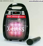 Мобильная заряжаемая акустика, радиомикрофон RX810BT