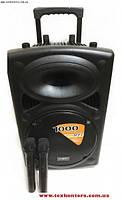 Аккумуляторная колонка + 2 радиомикрофона UKC BT 15A