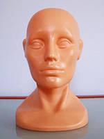 Женская голова выставочная