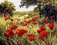 Картины по номерам (MR-Q1432) Маковая поляна