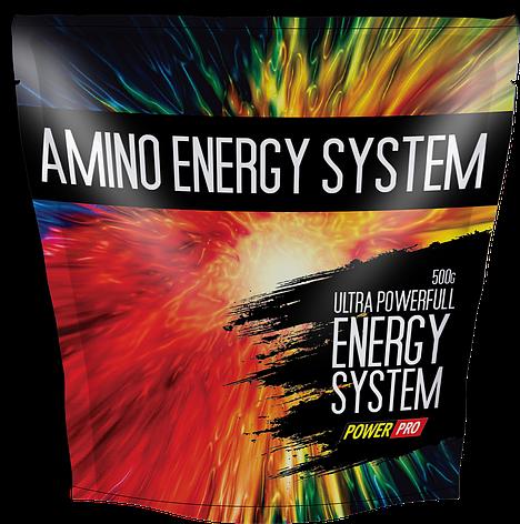Power Pro Amino Energy System 500 g, фото 2