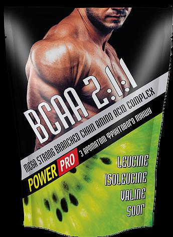 Power Pro BCAA g 500, фото 2