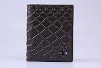 Мужское портмоне PaOLO Ardens (8196-2) коричневый 11,5х9,5 см