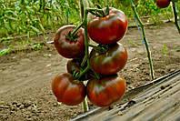 Семена томата Бронзон F1 250 семян (индетерминантный) черный