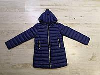Куртки на девочку оптом, Glo-Story, 110-160 рр, фото 1