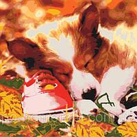 Картина по номерам (KHO4040) Спящий щенок 40 х 40 см
