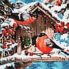 Картина по номерам (KHO4041) Кормушка для снегирей 40 х 40 см