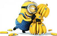 Картина по номерам (BK-GX21626) Миньоны Банана