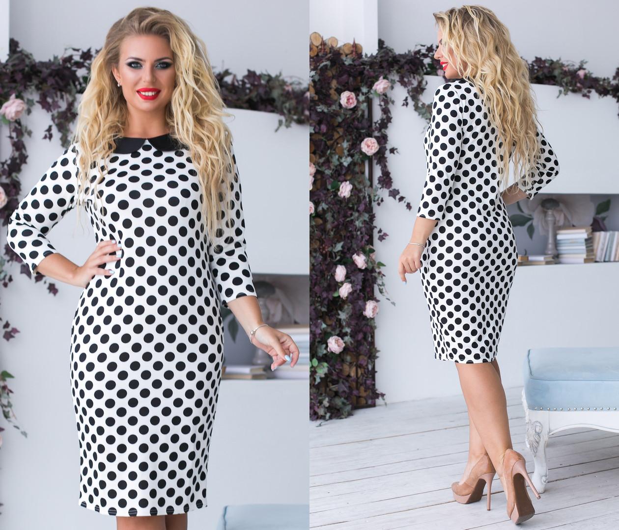 Платье  больших размеров 48+ прит горошек с воротником  / 2цвета арт 6684-93