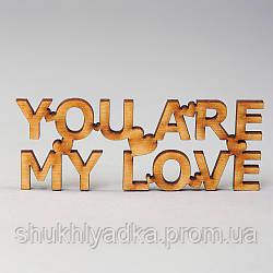 "Топпер_заготовка_декоративное слово ""YOU ARE MY LOVE"""