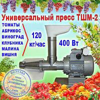 Шнековая соковыжималка ТШМ-2 для томатов (120 кг/ч), винограда, ягод, не требующая периодической очистки