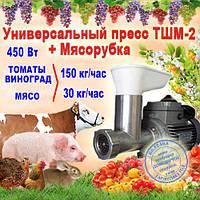 Шнековая соковыжималка + мясорубка ТШМ-2М для томатов, винограда, мяса (двигатель 450Вт), фото 1