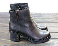Стильные кожаные ботинки на устойчивом каблуке Anna Lucci, фото 1