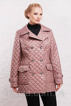 Женская демисезонная двубортная куртка 50-64 р пудра, фото 2