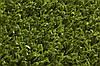 Искусственная трава JUTAgrass Essential 20