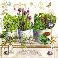 Декупажная салфетка Травы в горшках 3465