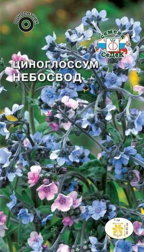 Циноглоссум (чернокорень) Небосвод