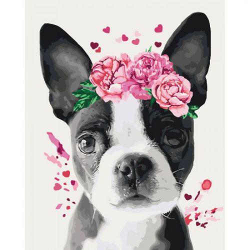 "Картина по номерам ""Собачка в цветочном венке"""