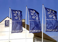 Уличные флаги, большие флаги с логотипом, фото 1