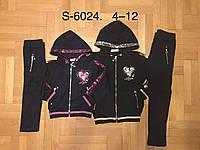 Трикотажный костюм-двойка для девочек  оптом, F&D ,4-12 лет., арт.S-6024
