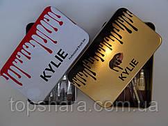 Набір кистей для нанесення макіяжу Kylie Professional Brush Set