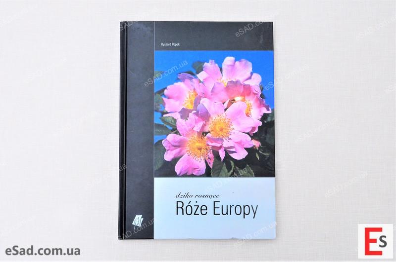 """Каталог """"Дикоростучі троянди Європи"""""""