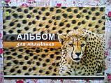 Альбом А4 8 л СКОБА, фото 4
