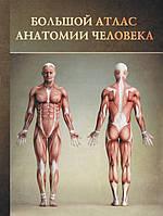 Большой атлас анатомии человека, фото 1