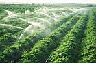 Шланг туман Silver Spray (200 м) ширина полива 8 м, диаметр 40 мм ., фото 5