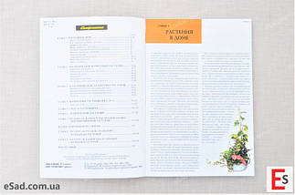 Все о комнатных растениях, фото 3