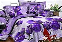 Комплект постельного белья PS-NZ 2483