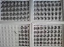 Ниппельная поилка 180° для кроликов и птиц из нержавеющей стали, фото 2