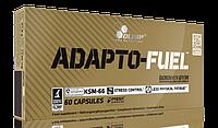 Olimp Adapto-Fuel caps 60