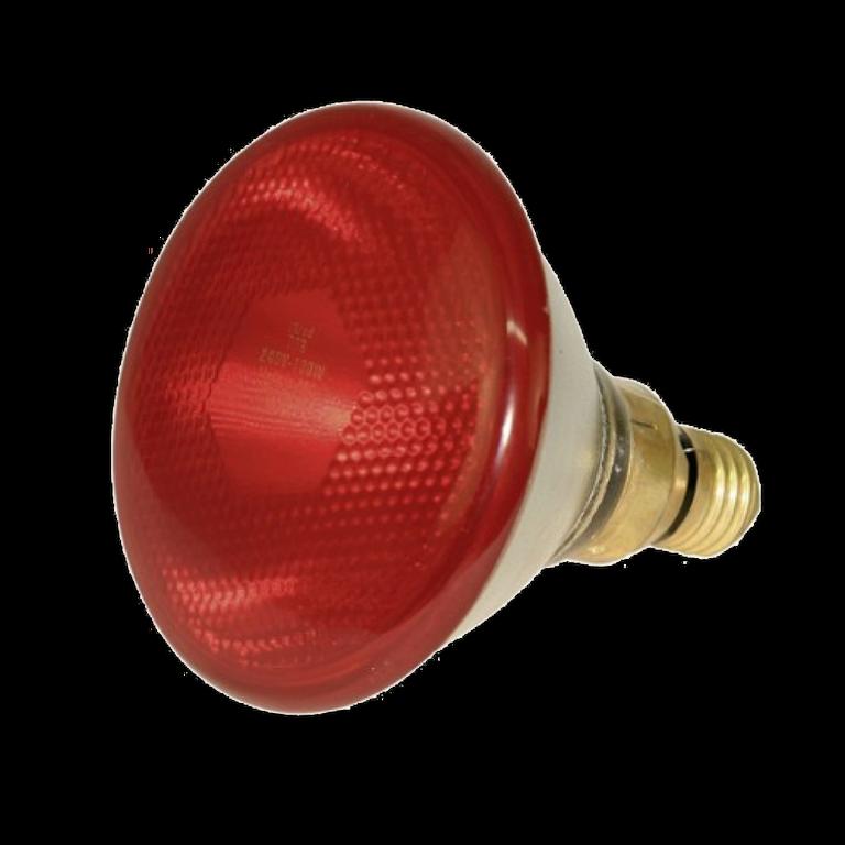 Инфракрасная лампа PAR38 175Вт 230В