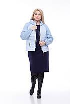 Куртка короткая большие размер от 42 до 56 плащевка плюс трикотажный довяз с капюшоном, фото 2