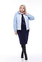 Куртка короткая большие размер от 42 до 56 плащевка плюс трикотажный довяз с капюшоном, фото 3