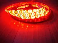 Светодиодная лента smd5050 (ip65) 60 диодов красная