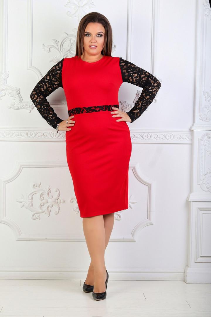 Приталенное платье миди больших размеров 48+  с кружевным рукавом /4 цвета   арт 6733-574