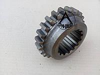 Колесо зубчатое 1 передачи ЮМЗ 40-1701054 Z=24 , фото 1