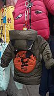 Куртка демисзонная для мальчиков, фото 1