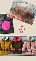 Куртка утепленная для девочек оптом, Setty Koop, 1-5 лет,  № AP813