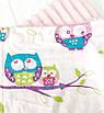 """Плед детский с полосатым плюшем  Minki  """"Цветные совушки""""  Розового цвета, фото 3"""