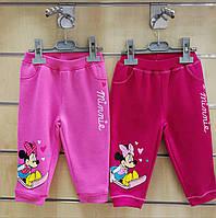 Спортивные штаны для девочек оптом, Disney, 68-86 см,  № 81561